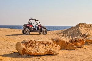 Buggies 4x4 - 80182 offers